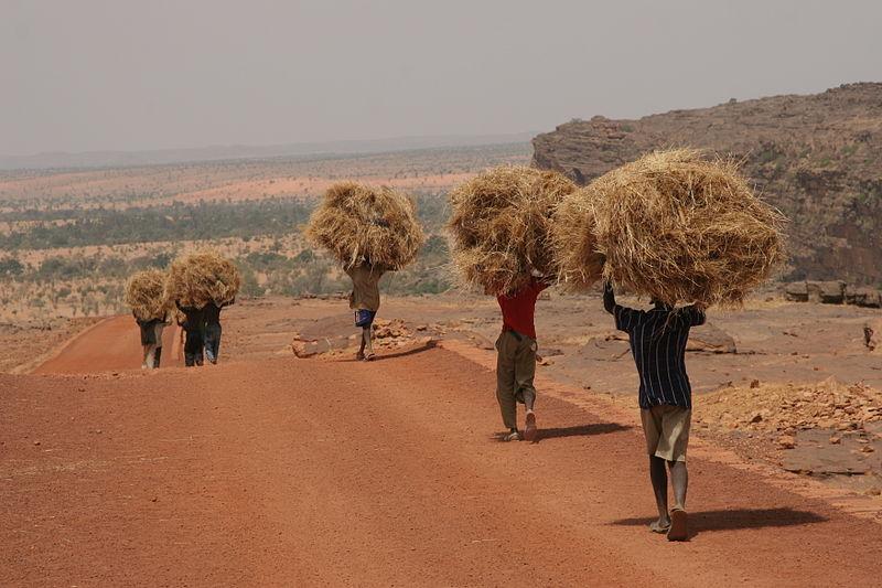 Mali di fine secolo – Diario di viaggio