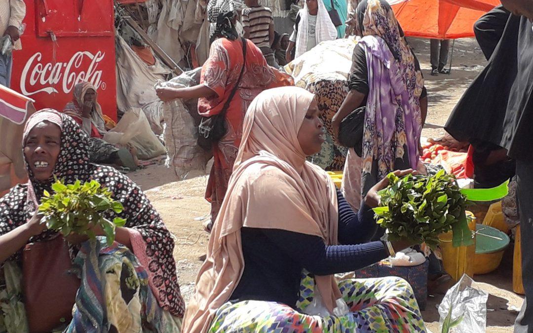 Da Addis Abeba a Djibuti – Diario di viaggio