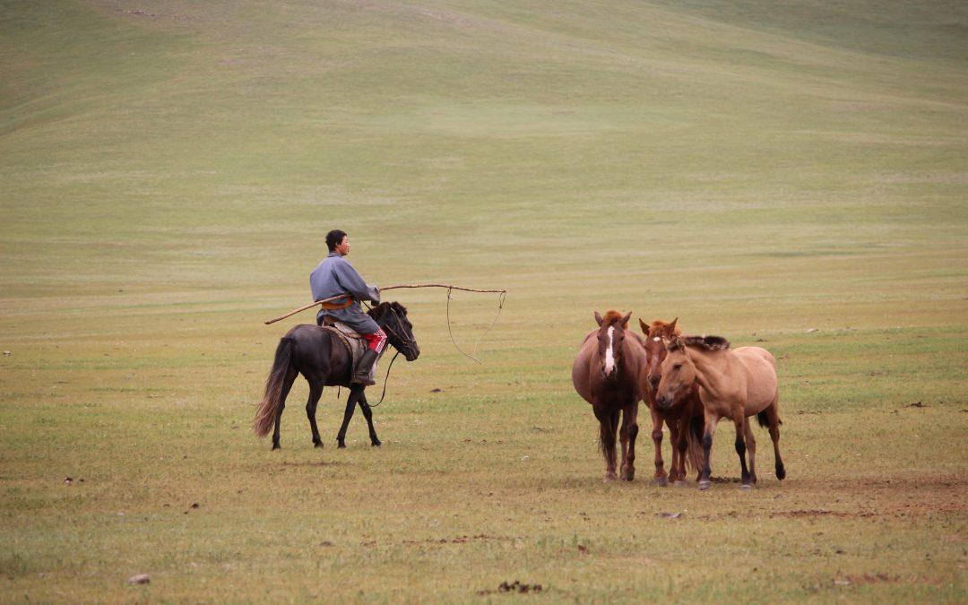 VERSO IL DESERTO DEL GOBHI – Mongolia 2016  – Diario di viaggio
