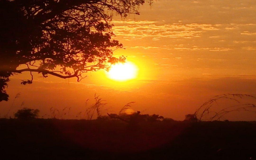 Mi sono concessa un regalo: Un viaggio in Zambia – diario di viaggio